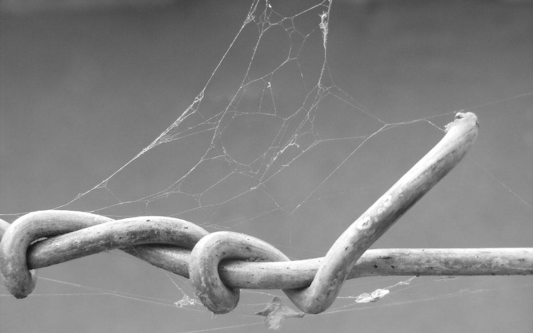 Szétbogozni a kötelékeket